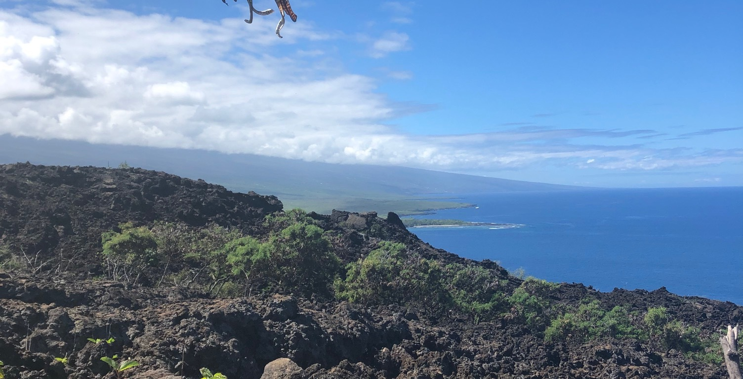 View of the ocean from Captain Cook Monument trail on the Big Island